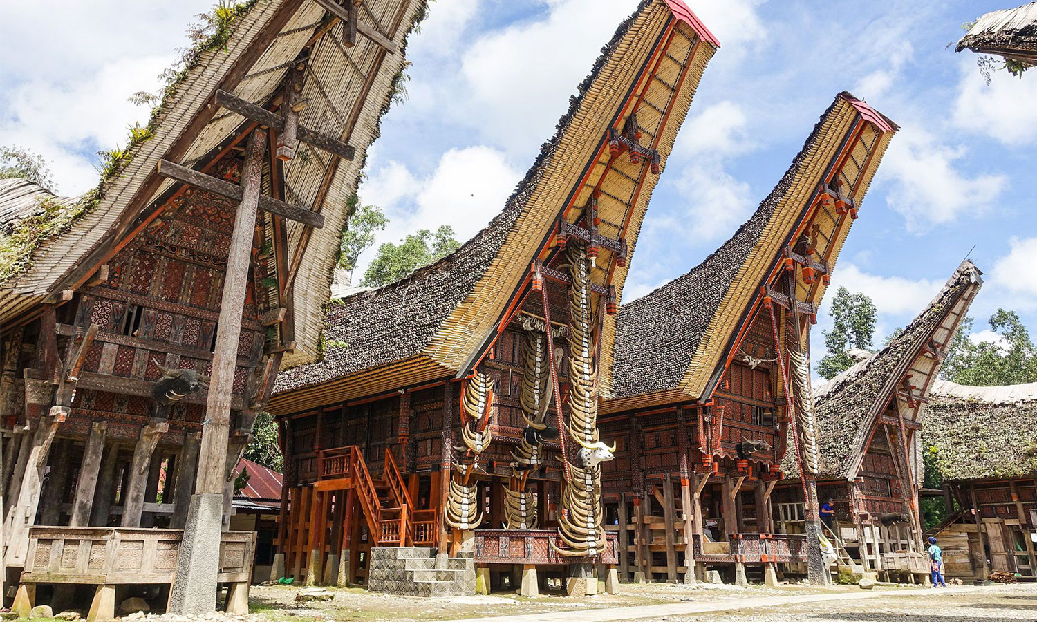 Toraja Culture and Land of Phinisi Expert, Tana Beru  7 Days
